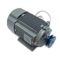 Электродвигатель взрывозащищенный, YBJY-80M2-4