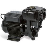 Насос для перекачивания дизельного топлива E300 (220V) PIUSI